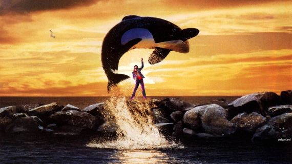 Free-Willy-Jump-MJ